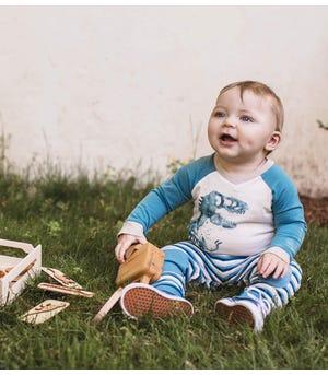 Organic Baby Rex Bodysuit & French Terry Striped Pant Set