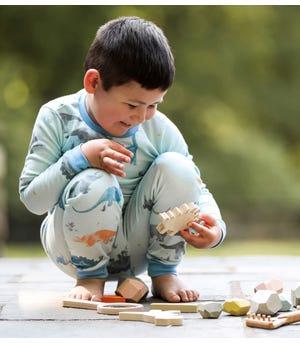 Jurassic Territory Organic Toddler Snug Fit Pajamas